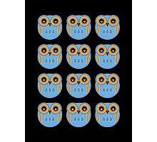 Blue Owls Photographic Print
