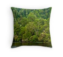Temperate rainforest Throw Pillow