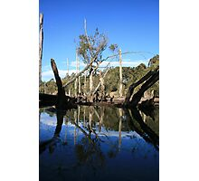 """""""TRANQUIL"""" Photographic Print"""