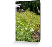 Alpine Pasture Greeting Card