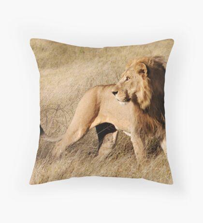 Male lion - Okavango Delta, Botswana Throw Pillow