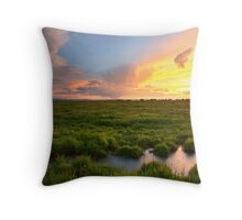 Placid 4 Throw Pillow