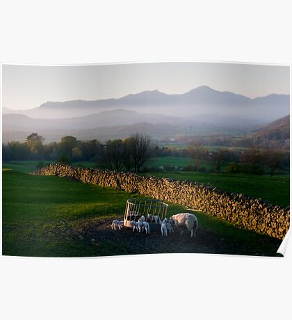 The view from Lowick in spring Poster