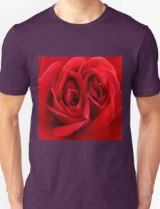 Twin Hearts Unisex T-Shirt