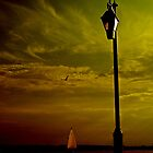 Beautiful Mood  by Rick  Todaro