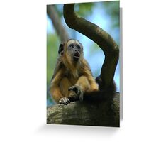 Howler in the Tree Greeting Card