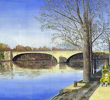 Rhone In spring by Peter Worsley