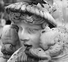 Bernini fountain, Piazza Navona, Rome by Theresa Elvin