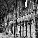 Holyrood Abbey. by Finbarr Reilly