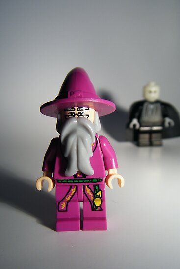 Dumbledore vs. Voldormort by HRLambert