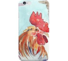 Country Diary - Buyers' Corner iPhone Case/Skin