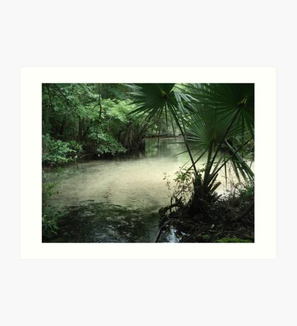 Outflow from the Beaverdam Art Print