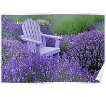 Come and sit among the Lavender Poster