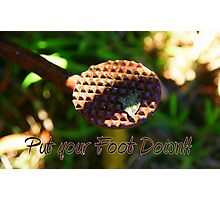 Put Your Foot Down!!! Photographic Print