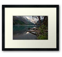 Alpine Jungle Framed Print