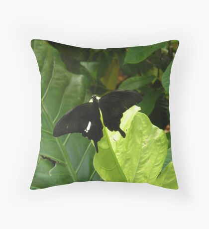 a black butterfly... for Alice Throw Pillow