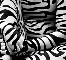 Zebra Print Detail by AnonymousArt