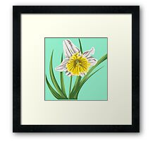 White watercolor bell-flower Framed Print