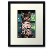 Just Meditating Framed Print