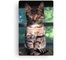 Just Meditating Canvas Print