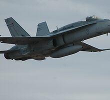 FA-18 Hornet by AndyKing