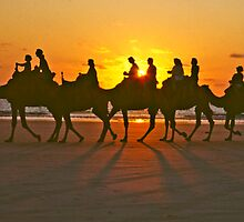 Camels at sunset by Dennis Wetherley
