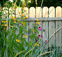 Garden Gone Wild by BarbL