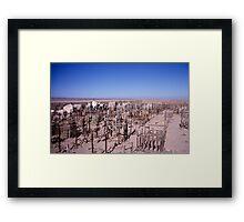 Atacama graveyard Framed Print