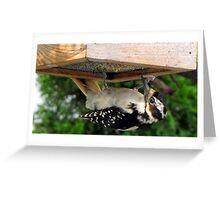 I feel so upside down ... Greeting Card