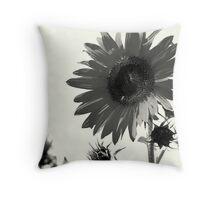 Sunflower-bk Throw Pillow