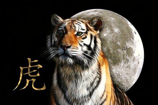 Moon Tiger by Marija