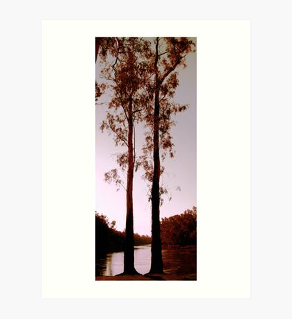 Two Souls - Trees on River Murray Art Print
