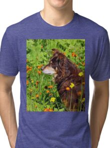 A Thoughtful Moment For  Australian Shepherd Tri-blend T-Shirt