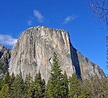 El Capitan ~ Yosemite National Park by Patty Boyte