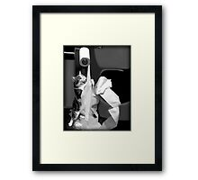 HUMEROUS MISCHIEVIOUS CAT-(FELINE) BATHROOM PICTURE,PILLOWS AND OR TOTE BAGS ECT..DOUBLE THE PLEASURE DOUBLE THE FUN LOL!! Framed Print