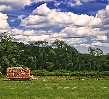Ridgefield Town Pasture - Hay wagon  by Andrew Hubbell