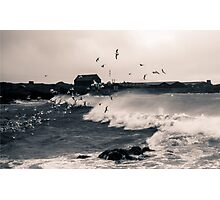 And the Wind Whipped The Gulls - 1 Photographic Print
