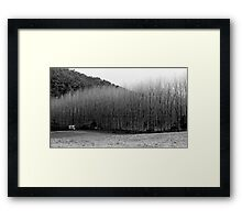Winter's Day - Colo 1 Framed Print