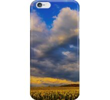 Sunflowers field under the storm light iPhone Case/Skin