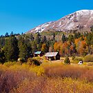Fall Colors in Hope valley by the57man