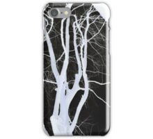 The Chaos of Nature iPhone Case/Skin