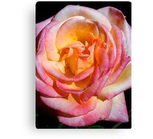 Rose Petals Canvas Print