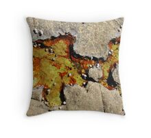 Rockpool Life Throw Pillow