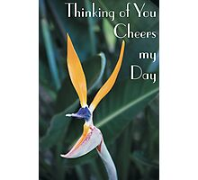 Thinking of you cheers my day Photographic Print