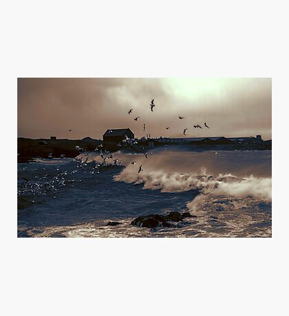 And the Wind Whipped The Gulls - 3 Photographic Print