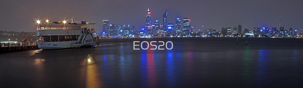 Decoy On A Stormy Night  by EOS20