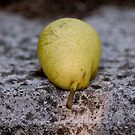 Pear In the Sun by Ilva Beretta