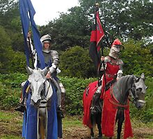 Knights of Old by Dawn B Davies-McIninch