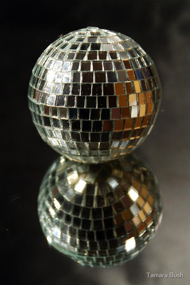 Shiny disco ball by Tamara Bush