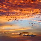 Skyscape of Mars  by Steven  Siow